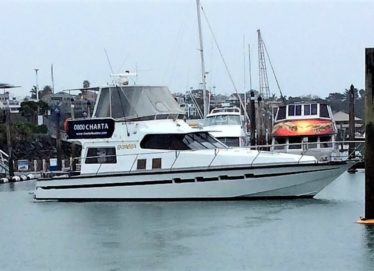 Damen 15.5m Charter Boat – Complete Package – Boat – Marina – Business